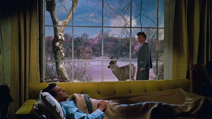 Tout ce que le ciel permet (All That Heaven Allows, Douglas Sirk, 1955)